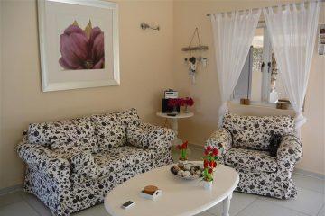 mooi-ingerichte-woonkamer-met-lekkere-bank-en-stoel